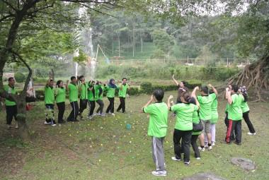 Activities 3