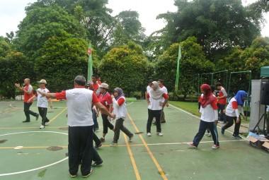 Activities 13